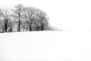 Winter Heverlee